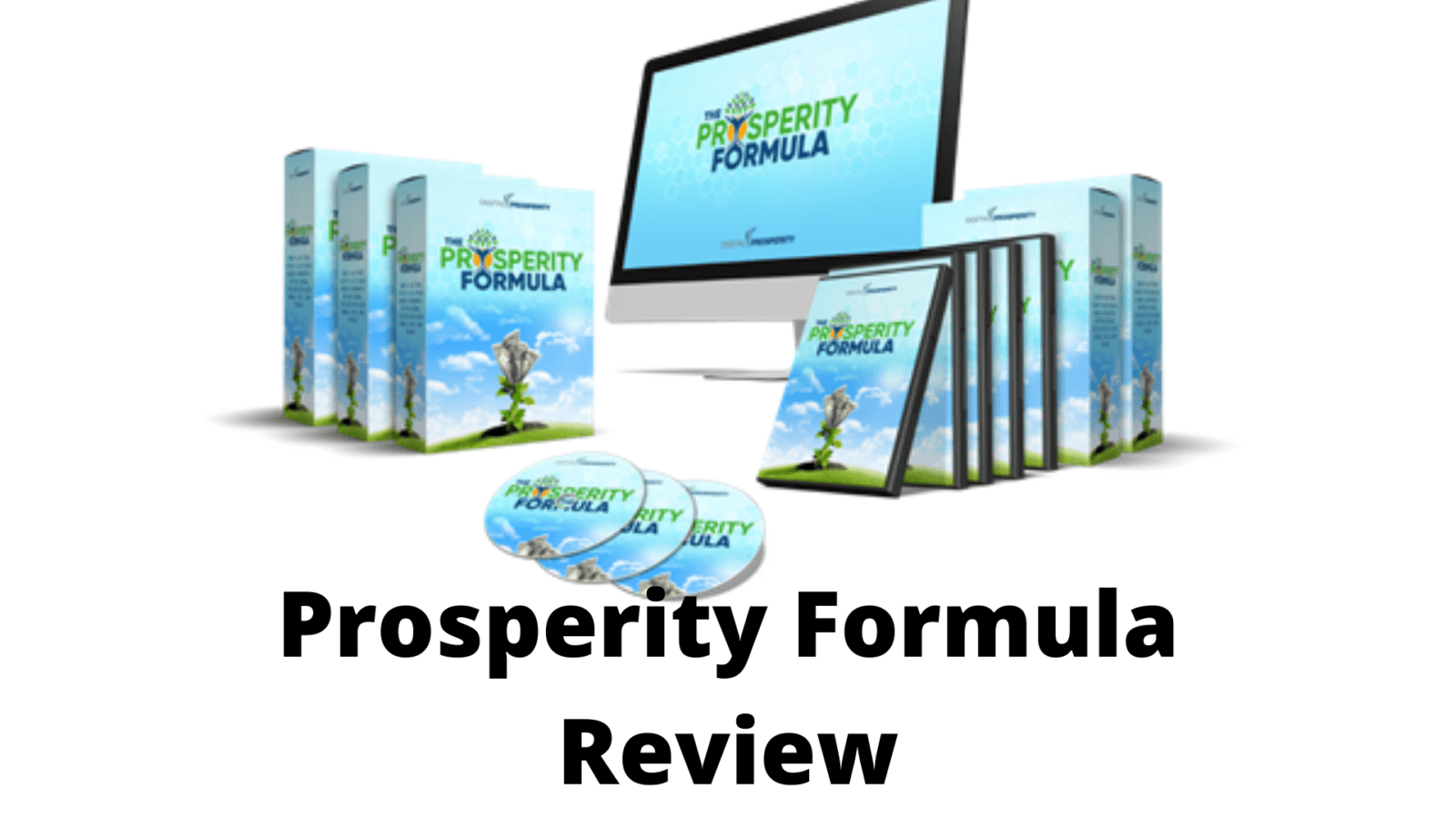The Prosperity Formula Review